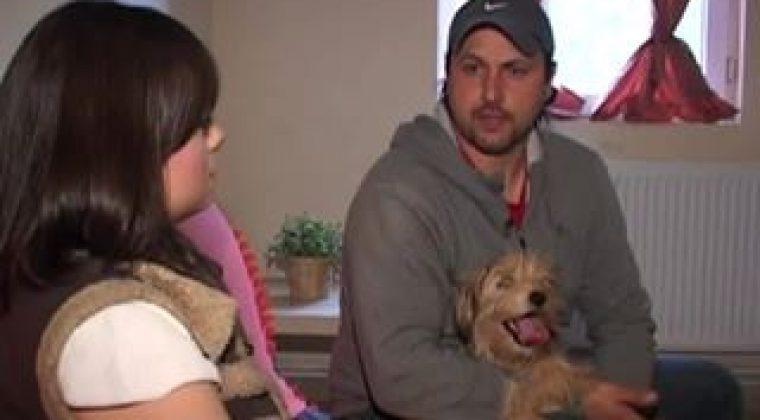 Ringstar Pet Hotel la Academia Canina